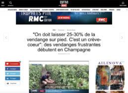 LA MATINALE BFM TV : Vendanges 2020